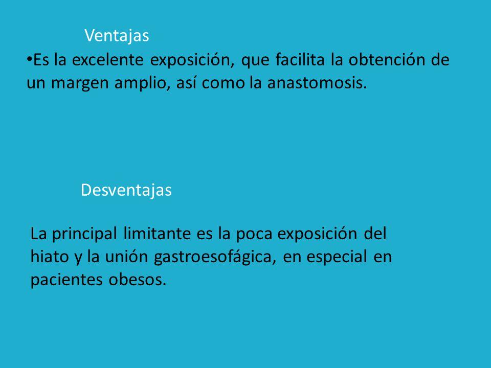 Ventajas Es la excelente exposición, que facilita la obtención de un margen amplio, así como la anastomosis.