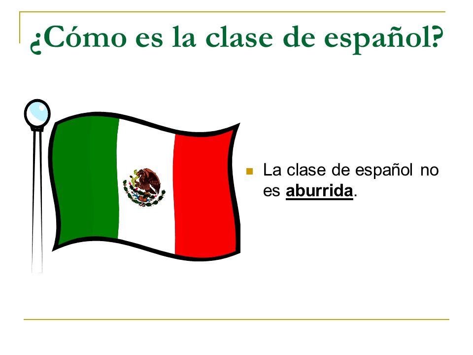 ¿Cómo es la clase de español