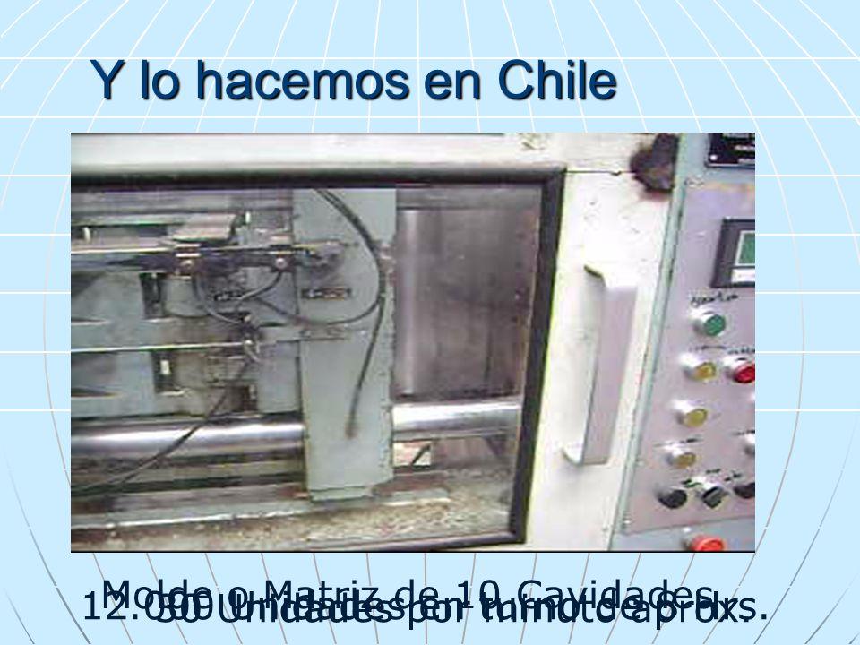 Y lo hacemos en Chile Molde o Matriz de 10 Cavidades