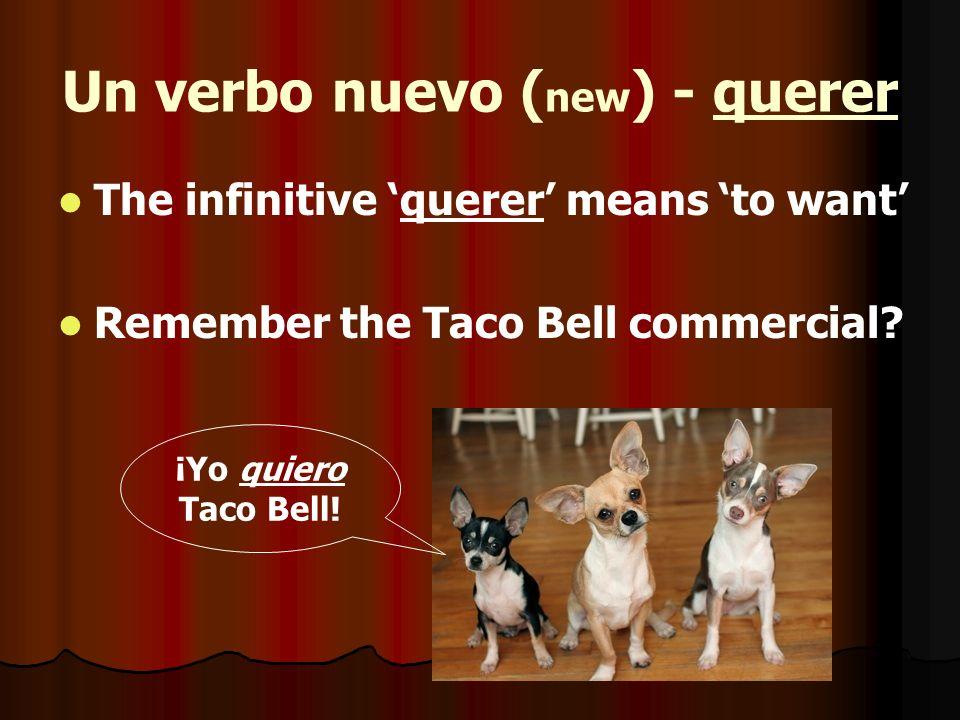 Un verbo nuevo (new) - querer