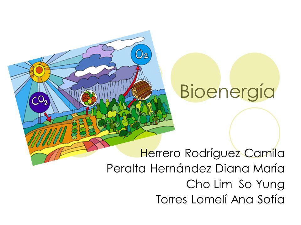 Bioenergía Herrero Rodríguez Camila Peralta Hernández Diana María
