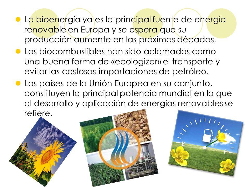 La bioenergía ya es la principal fuente de energía renovable en Europa y se espera que su producción aumente en las próximas décadas.