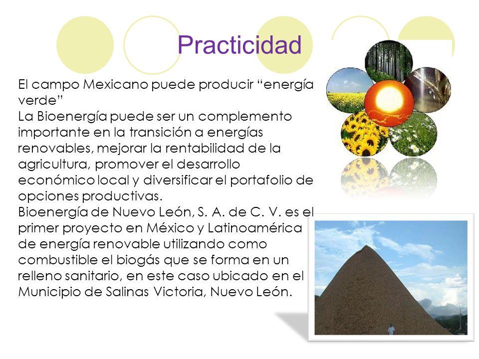 Practicidad El campo Mexicano puede producir energía verde