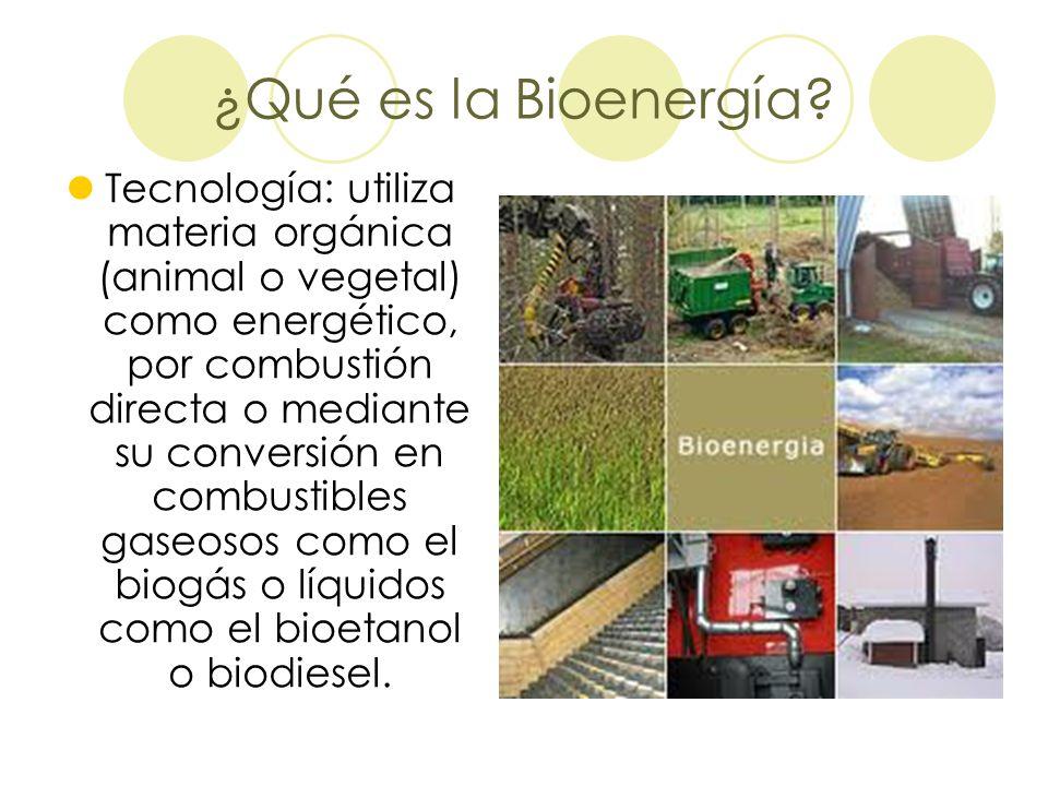 ¿Qué es la Bioenergía