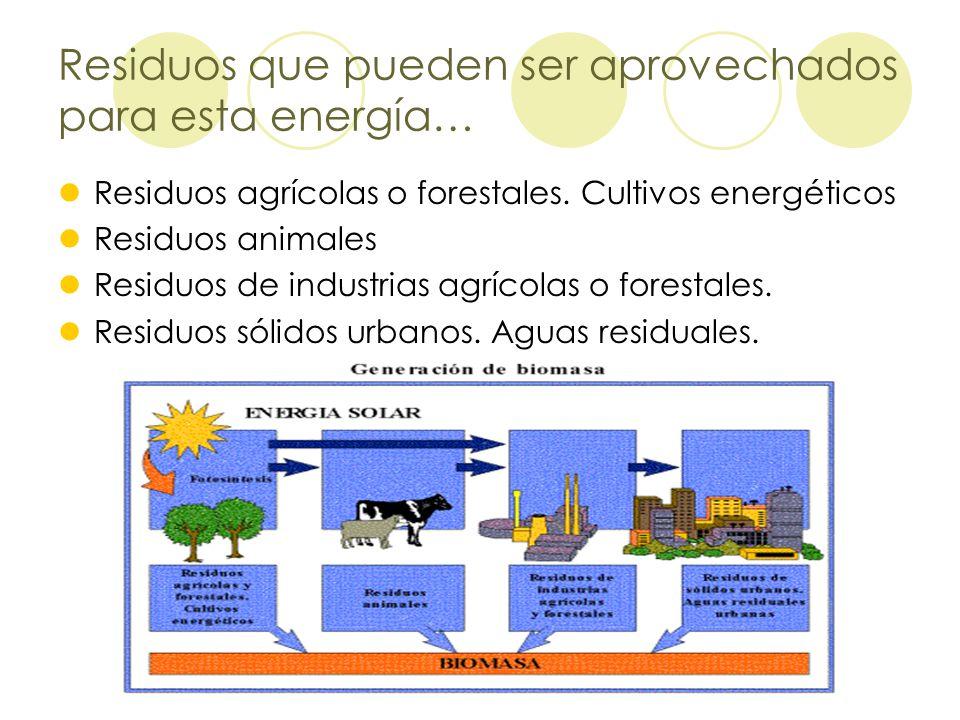 Residuos que pueden ser aprovechados para esta energía…
