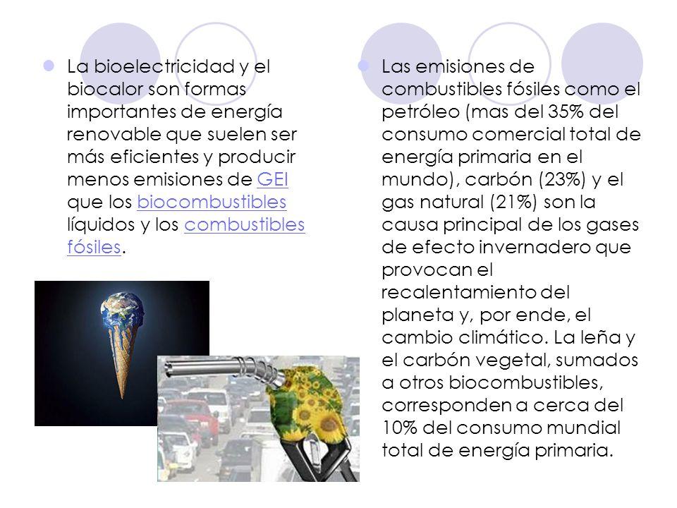 La bioelectricidad y el biocalor son formas importantes de energía renovable que suelen ser más eficientes y producir menos emisiones de GEI que los biocombustibles líquidos y los combustibles fósiles.