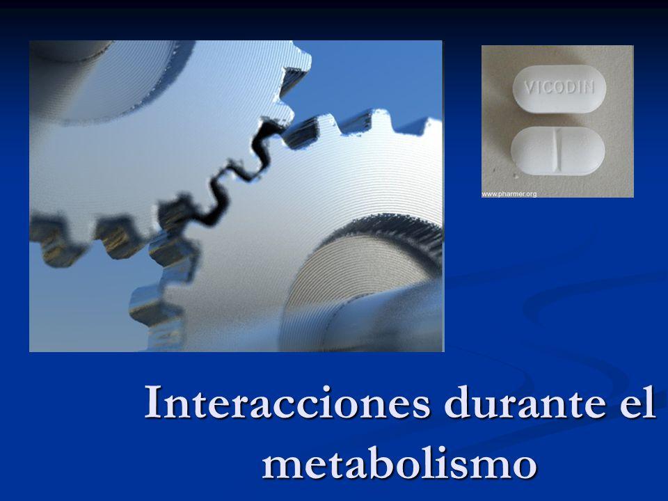 Interacciones durante el metabolismo