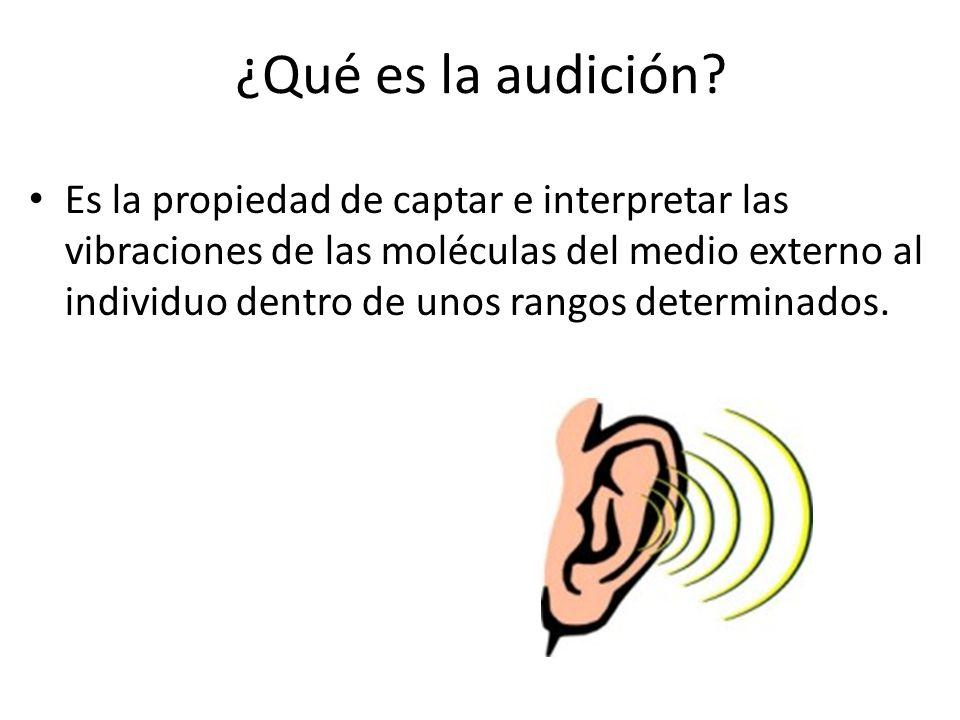 ¿Qué es la audición