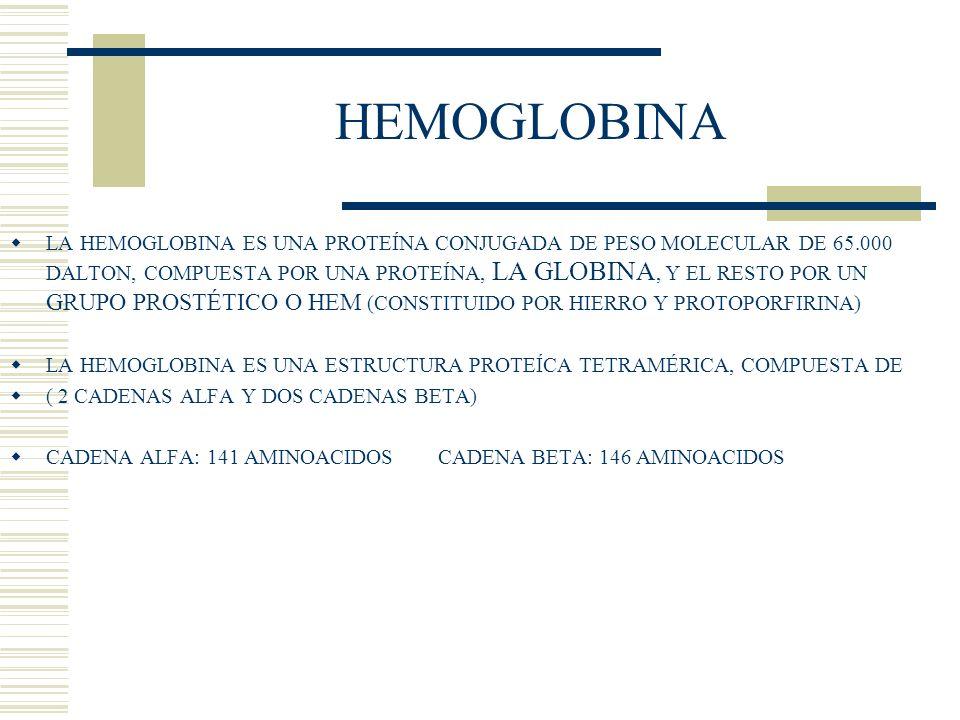 HEMOGLOBINA