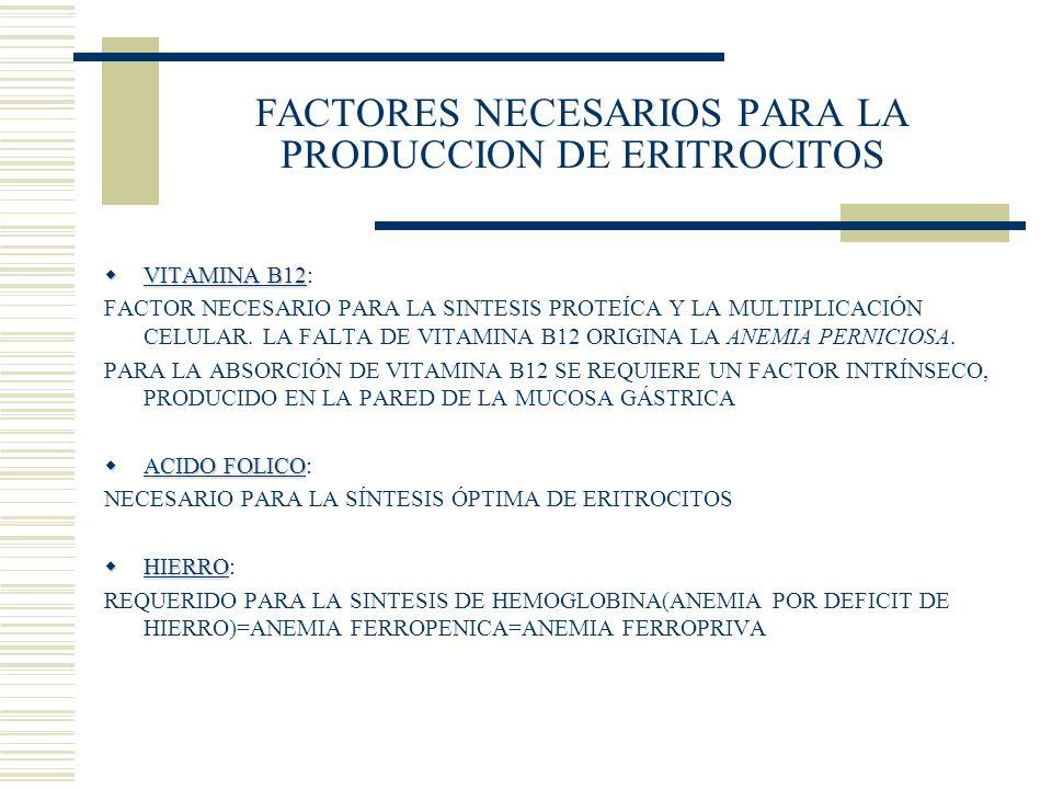 FACTORES NECESARIOS PARA LA PRODUCCION DE ERITROCITOS