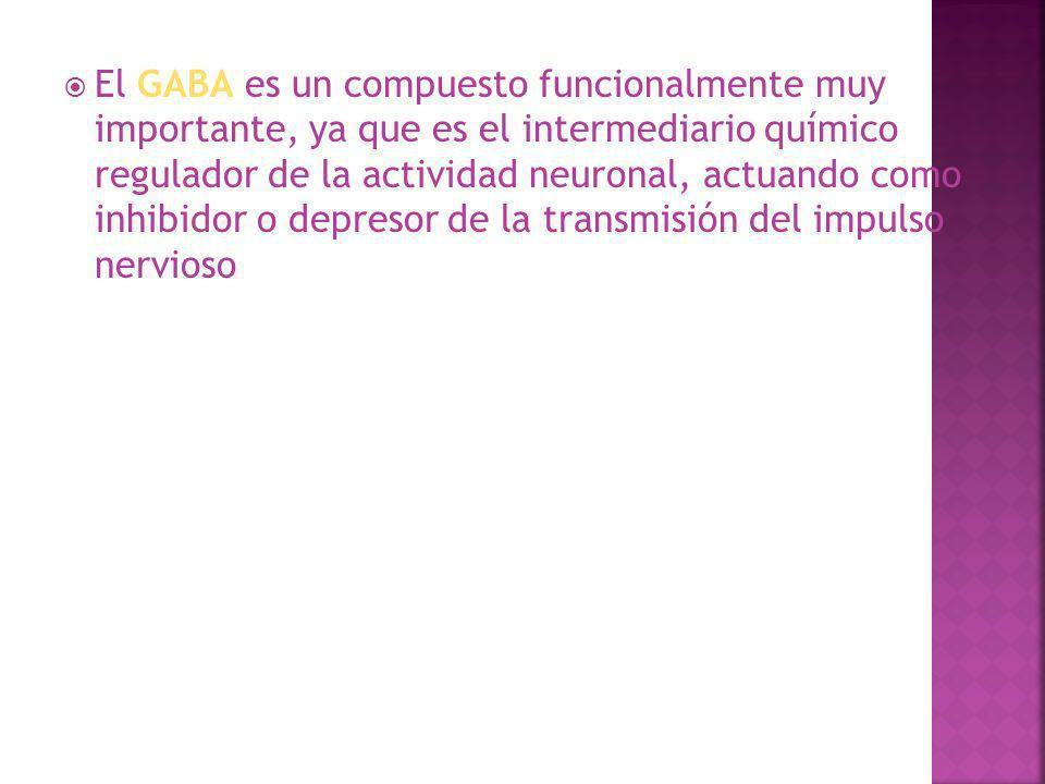 El GABA es un compuesto funcionalmente muy importante, ya que es el intermediario químico regulador de la actividad neuronal, actuando como inhibidor o depresor de la transmisión del impulso nervioso