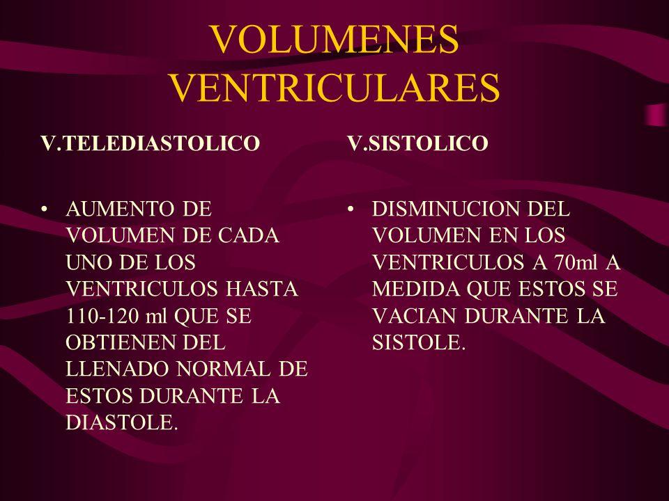 VOLUMENES VENTRICULARES