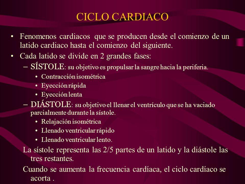 CICLO CARDIACO Fenomenos cardiacos que se producen desde el comienzo de un latido cardiaco hasta el comienzo del siguiente.