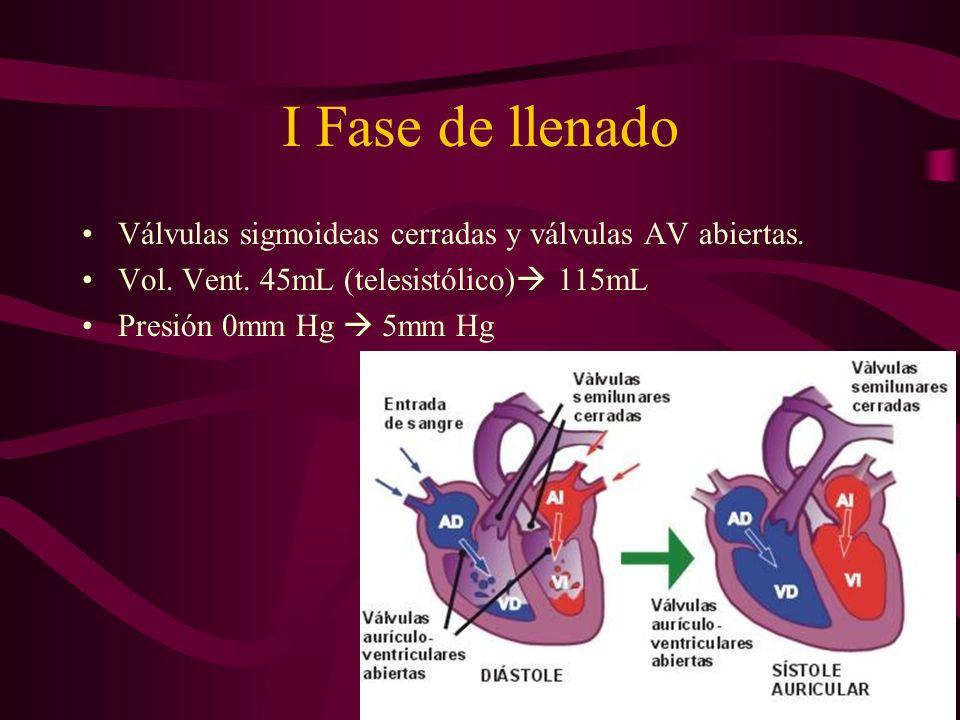 I Fase de llenado Válvulas sigmoideas cerradas y válvulas AV abiertas.