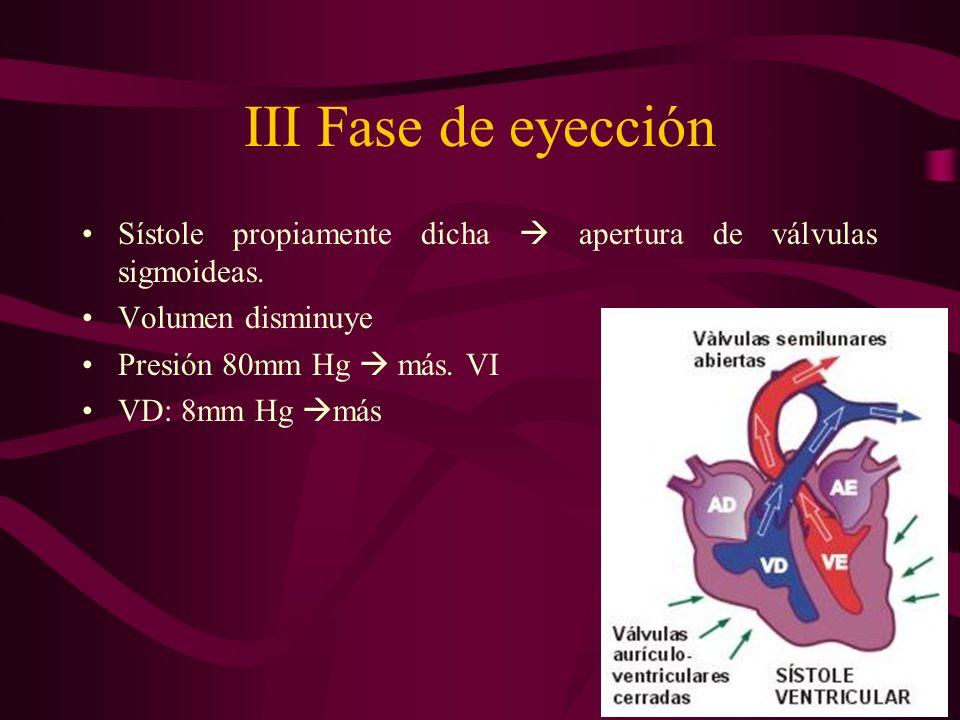 III Fase de eyección Sístole propiamente dicha  apertura de válvulas sigmoideas. Volumen disminuye.