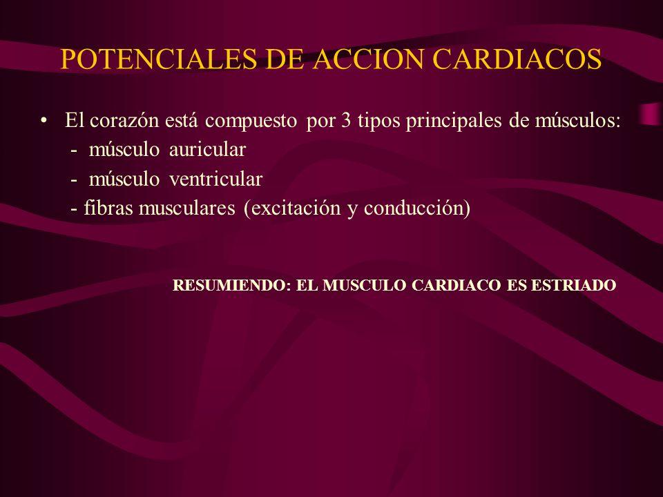 POTENCIALES DE ACCION CARDIACOS