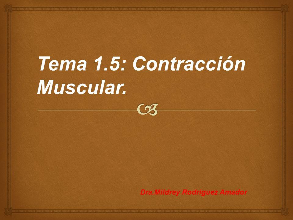 Tema 1.5: Contracción Muscular.
