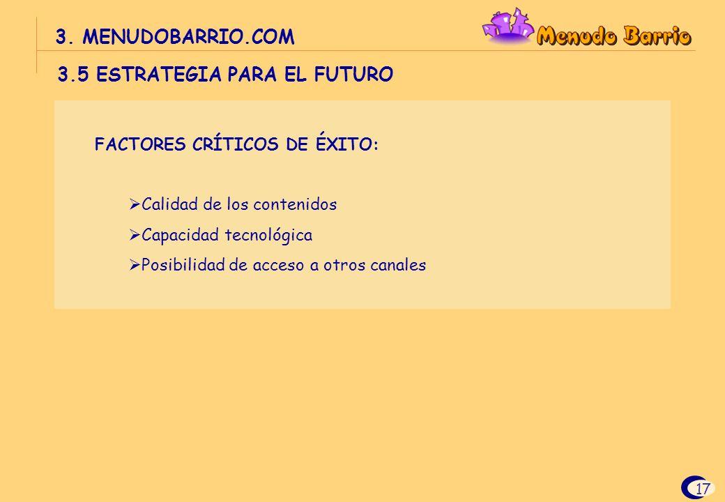 3.5 ESTRATEGIA PARA EL FUTURO