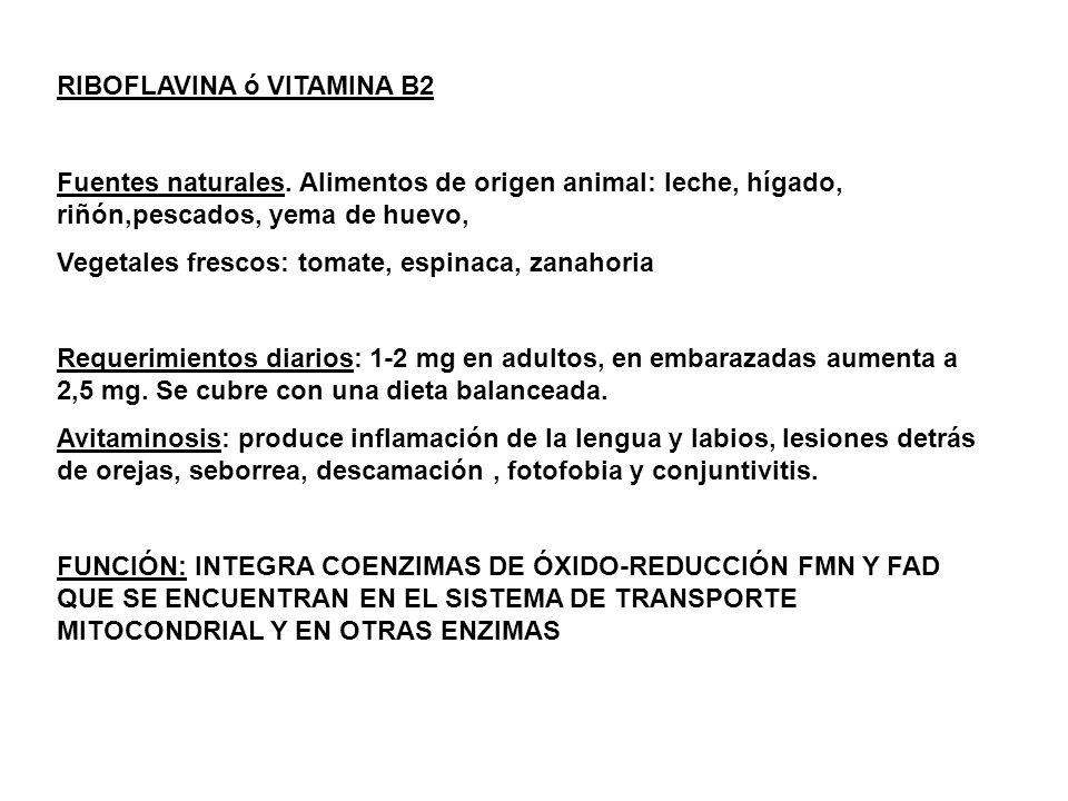 RIBOFLAVINA ó VITAMINA B2