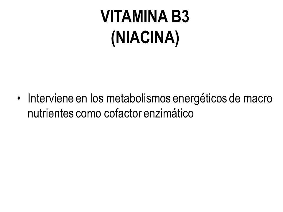VITAMINA B3 (NIACINA) Interviene en los metabolismos energéticos de macro nutrientes como cofactor enzimático.