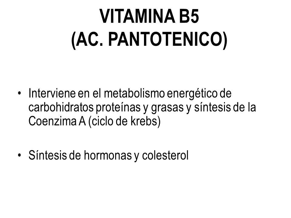 VITAMINA B5 (AC. PANTOTENICO)