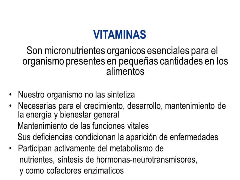Son micronutrientes organicos esenciales para el organismo presentes en pequeñas cantidades en los alimentos