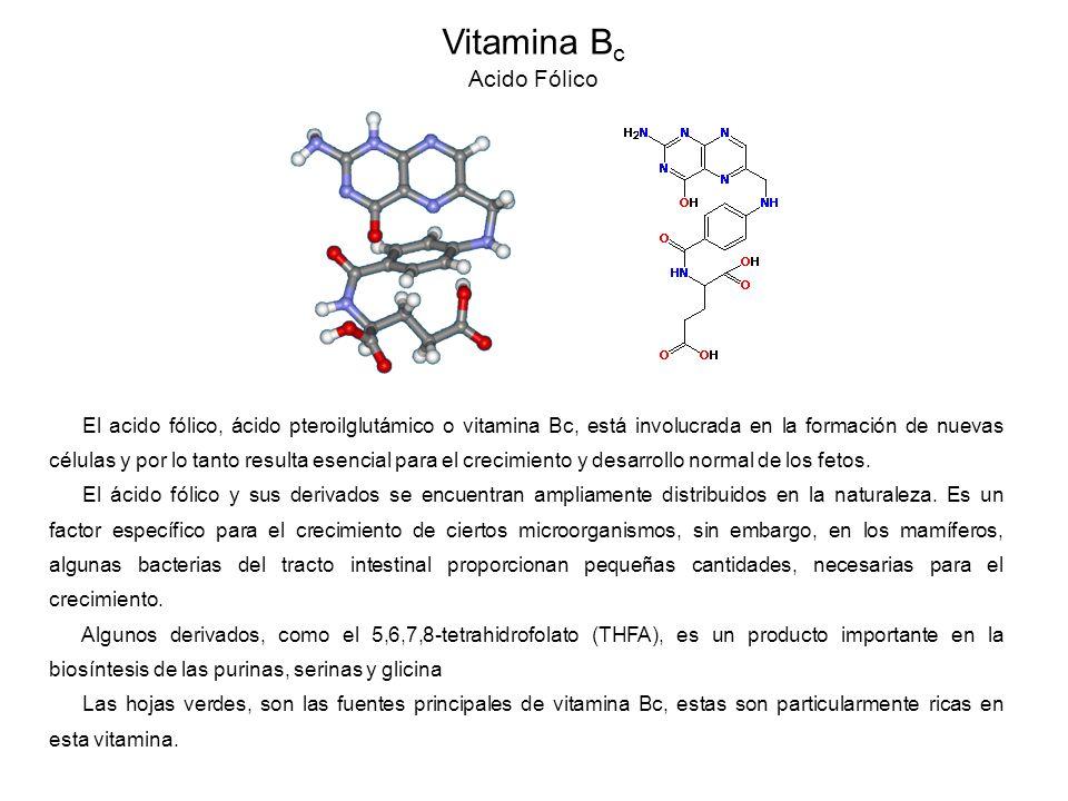 Vitamina Bc Acido Fólico