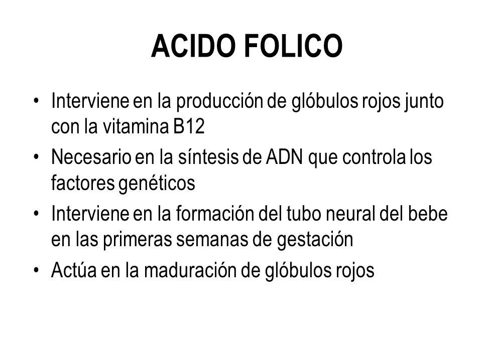 ACIDO FOLICO Interviene en la producción de glóbulos rojos junto con la vitamina B12.
