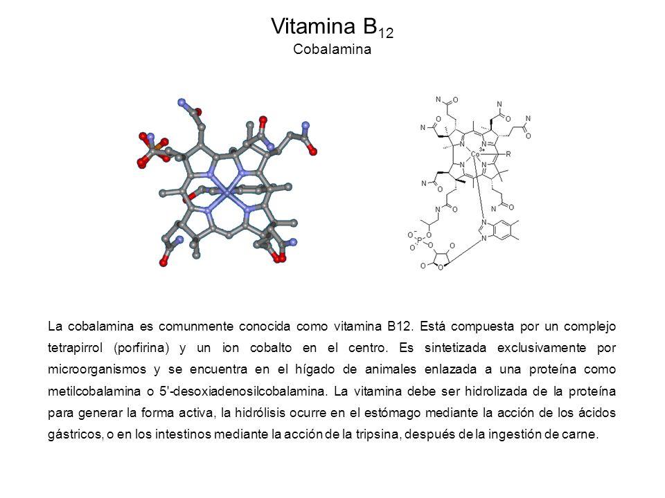 Vitamina B12 Cobalamina.