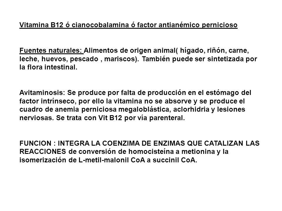 Vitamina B12 ó cianocobalamina ó factor antianémico pernicioso