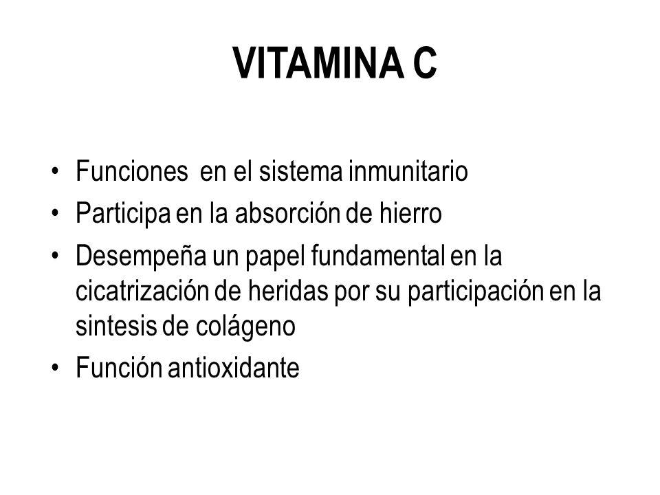 VITAMINA C Funciones en el sistema inmunitario