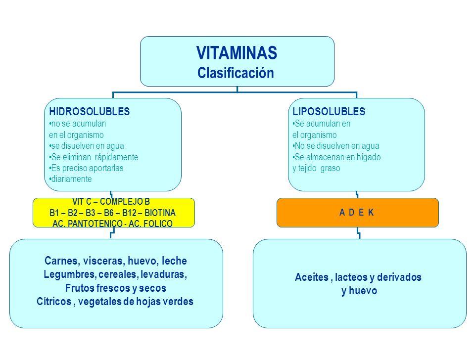 VITAMINAS Clasificación Carnes, visceras, huevo, leche HIDROSOLUBLES