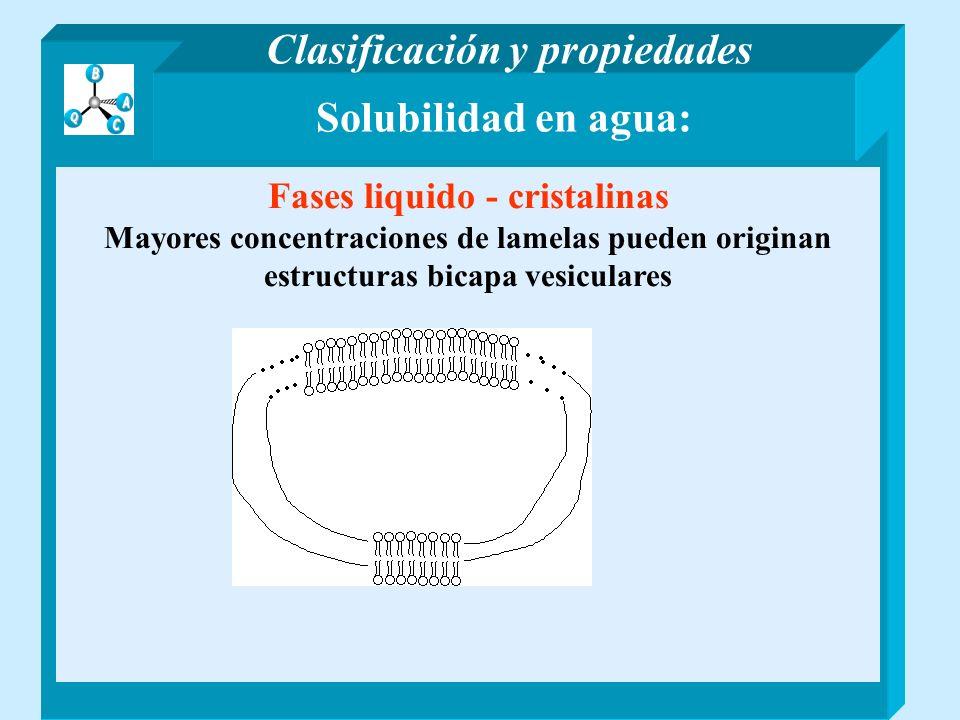 Clasificación y propiedades Fases liquido - cristalinas