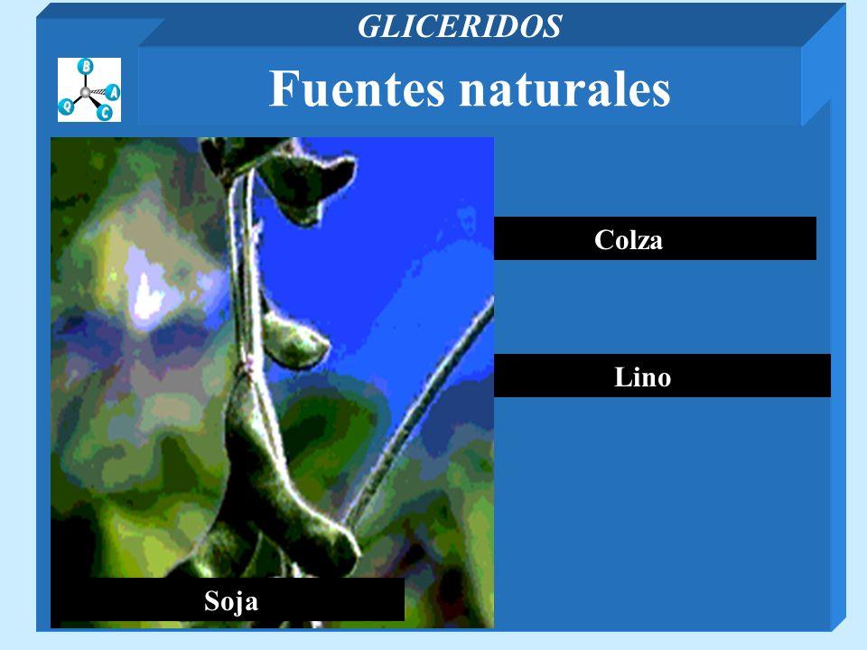 GLICERIDOS Fuentes naturales Soja Colza Lino