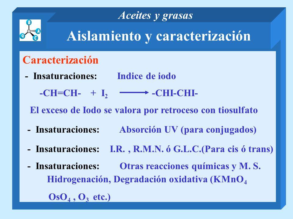 Aislamiento y caracterización
