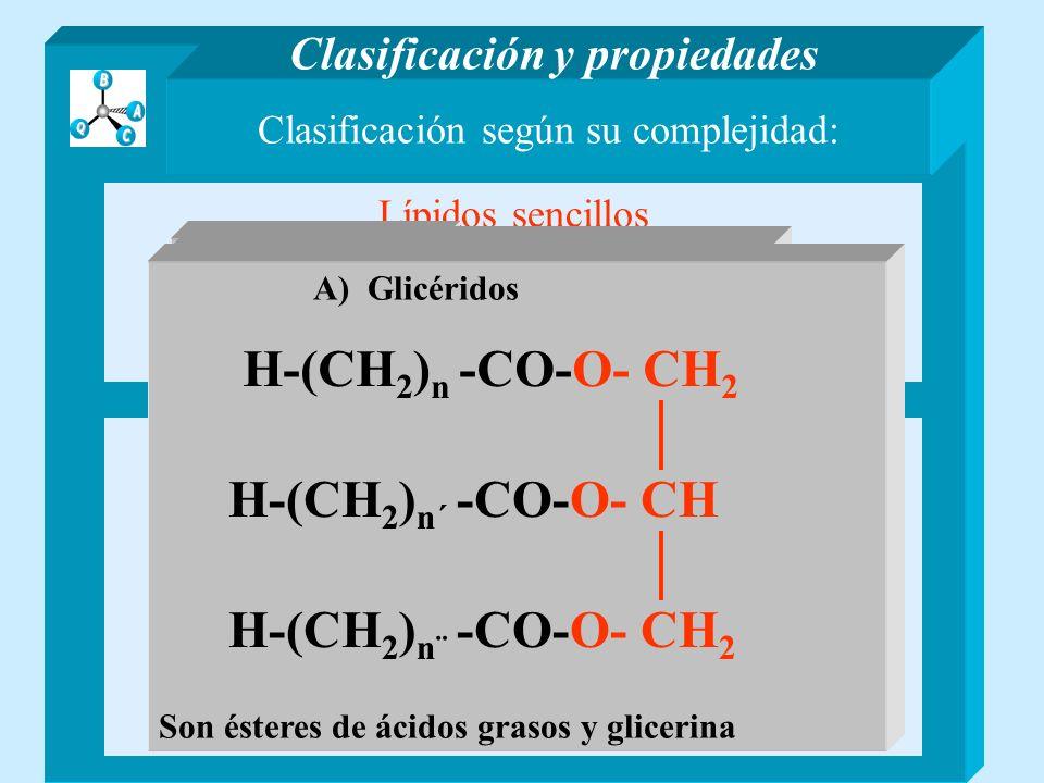 H-(CH2)n -CO-O- CH2 H-(CH2)n´ -CO-O- CH H-(CH2)n¨ -CO-O- CH2