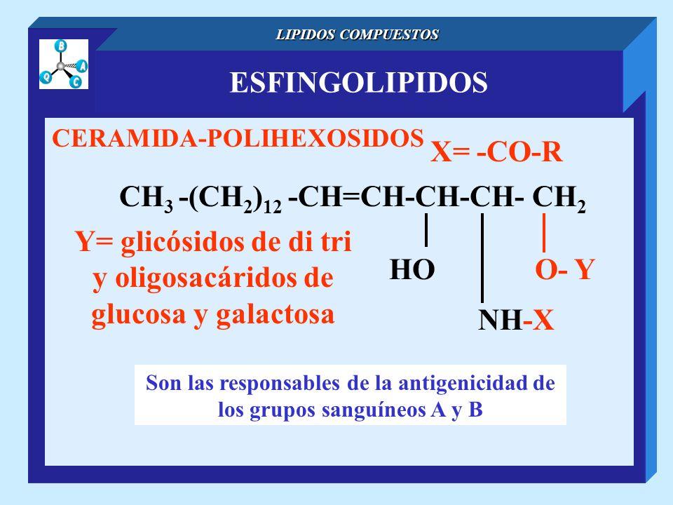 CH3 -(CH2)12 -CH=CH-CH-CH- CH2