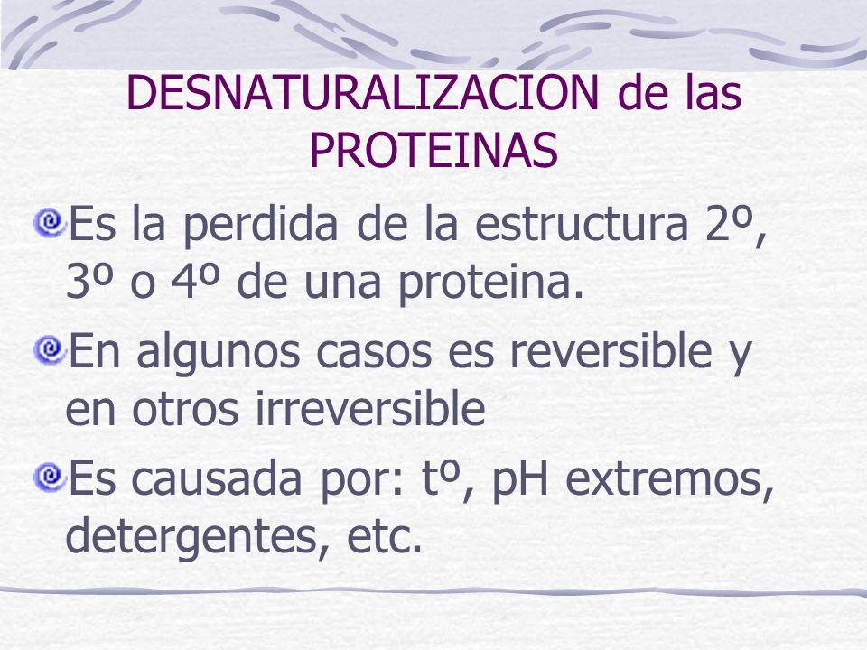 DESNATURALIZACION de las PROTEINAS