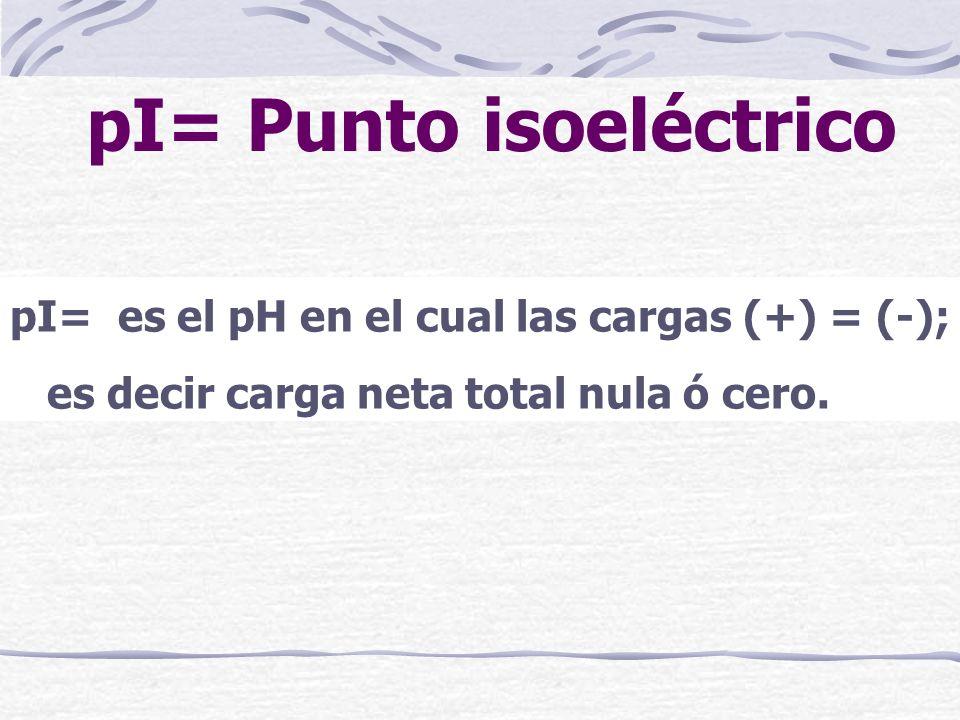 pI= Punto isoeléctrico