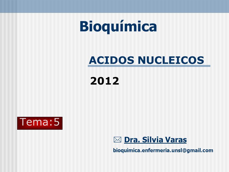 Bioquímica ACIDOS NUCLEICOS 2012 Tema:5  Dra. Silvia Varas