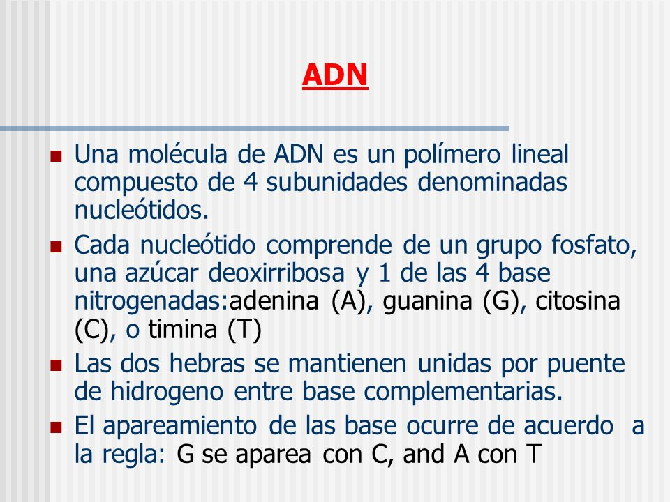 ADN Una molécula de ADN es un polímero lineal compuesto de 4 subunidades denominadas nucleótidos.