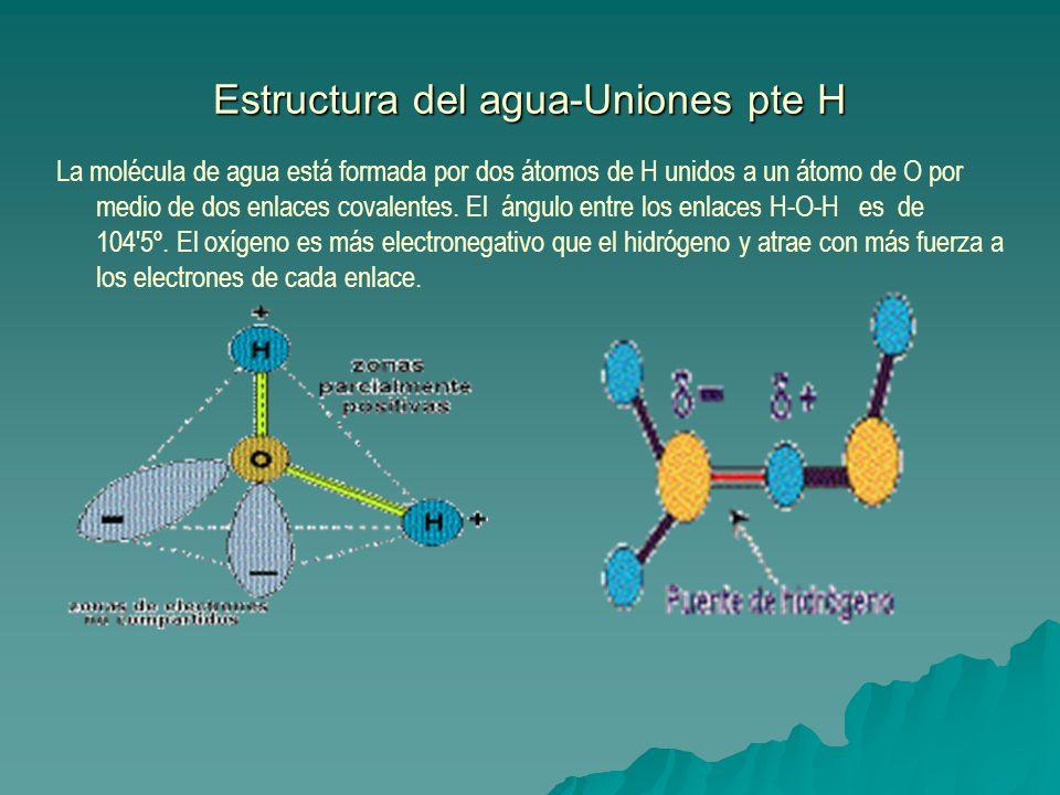 Estructura del agua-Uniones pte H