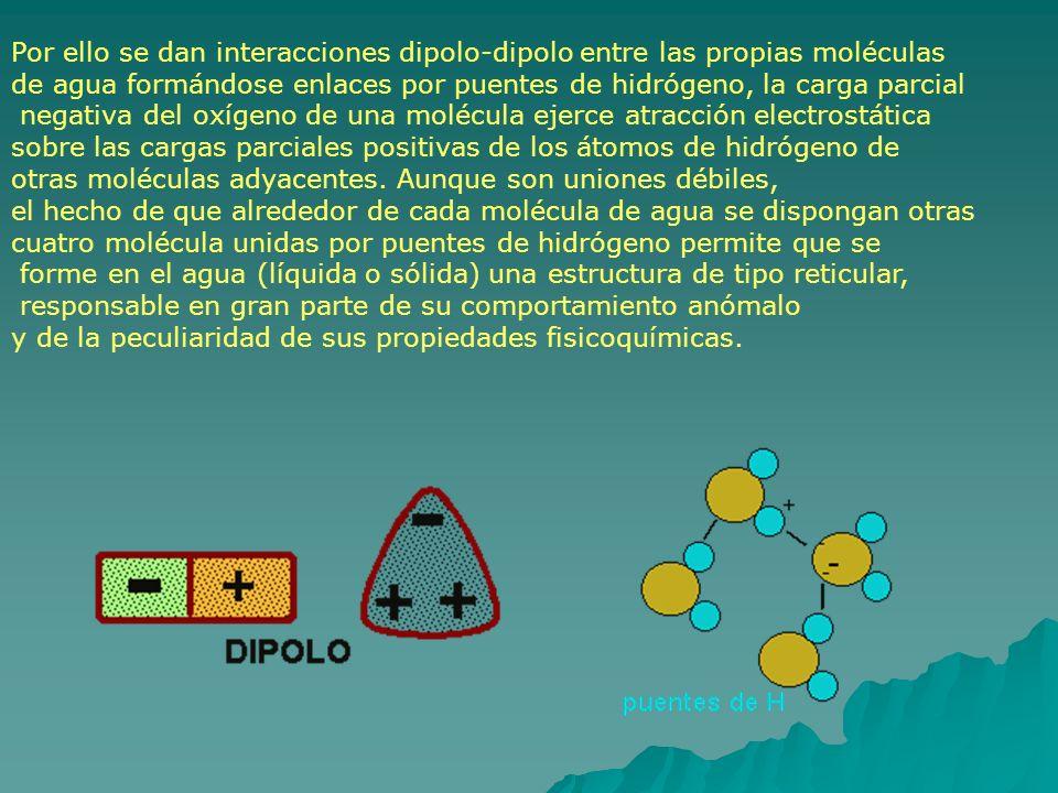 Por ello se dan interacciones dipolo-dipolo entre las propias moléculas