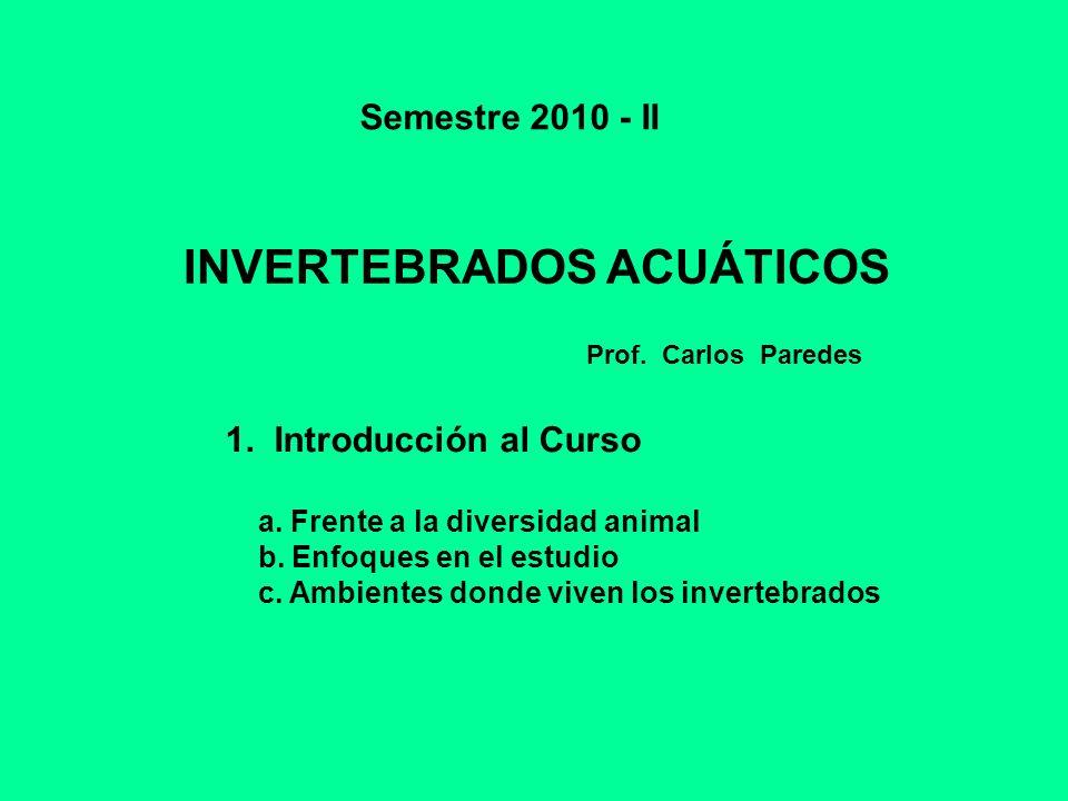 INVERTEBRADOS ACUÁTICOS