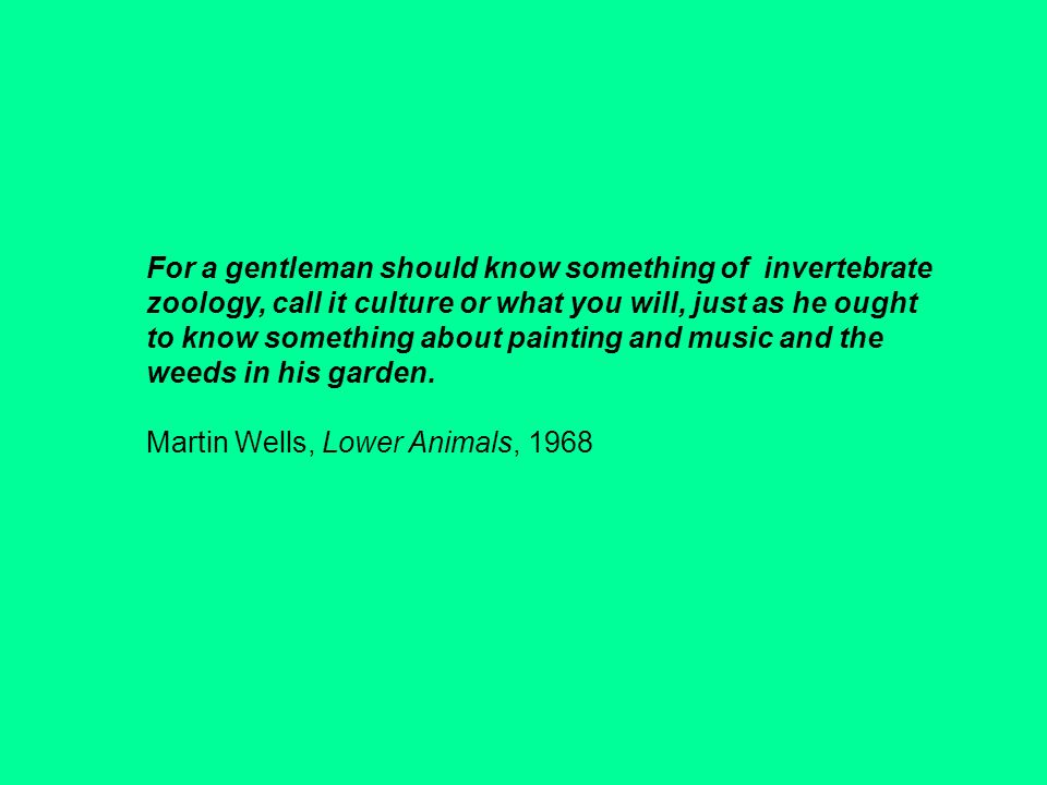 For a gentleman should know something of invertebrate zoology, call it culture or what you will, just as he ought to know something about painting and music and the weeds in his garden.