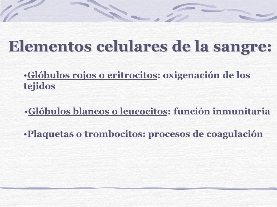 Elementos celulares de la sangre: