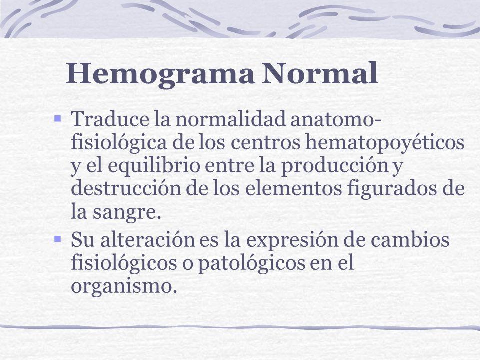Hemograma Normal