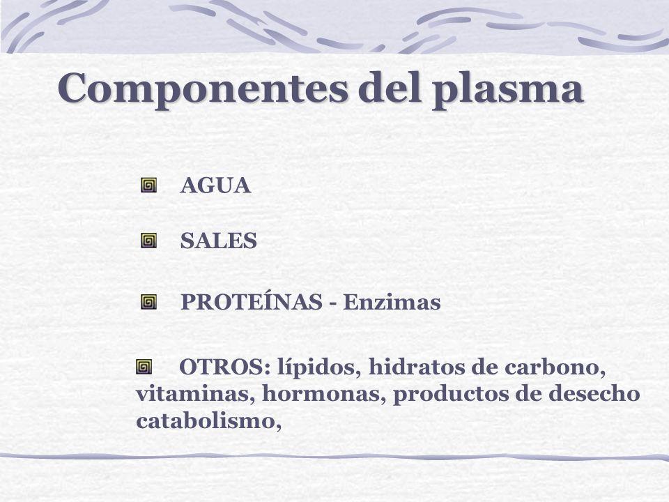 Componentes del plasma
