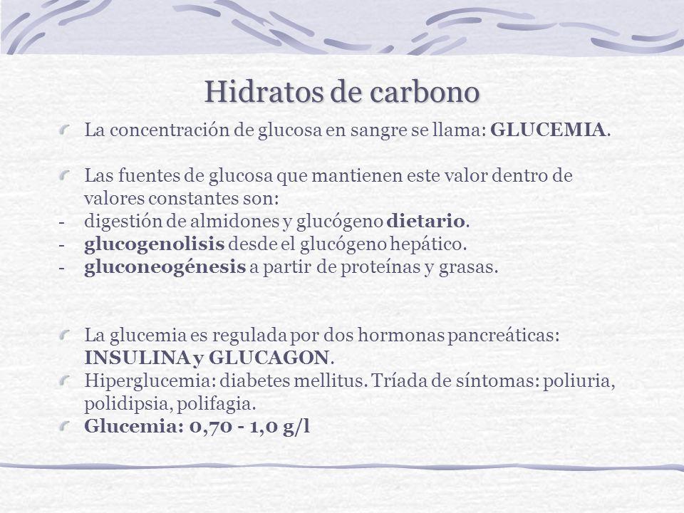 Hidratos de carbonoLa concentración de glucosa en sangre se llama: GLUCEMIA.