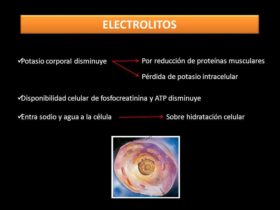 ELECTROLITOS Potasio corporal disminuye